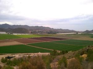 jäävuorisalaattipellot espanjassa
